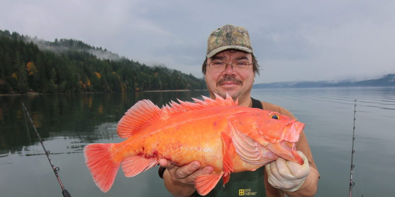 Seattle Fishing Charter Yelloweye Rockfish