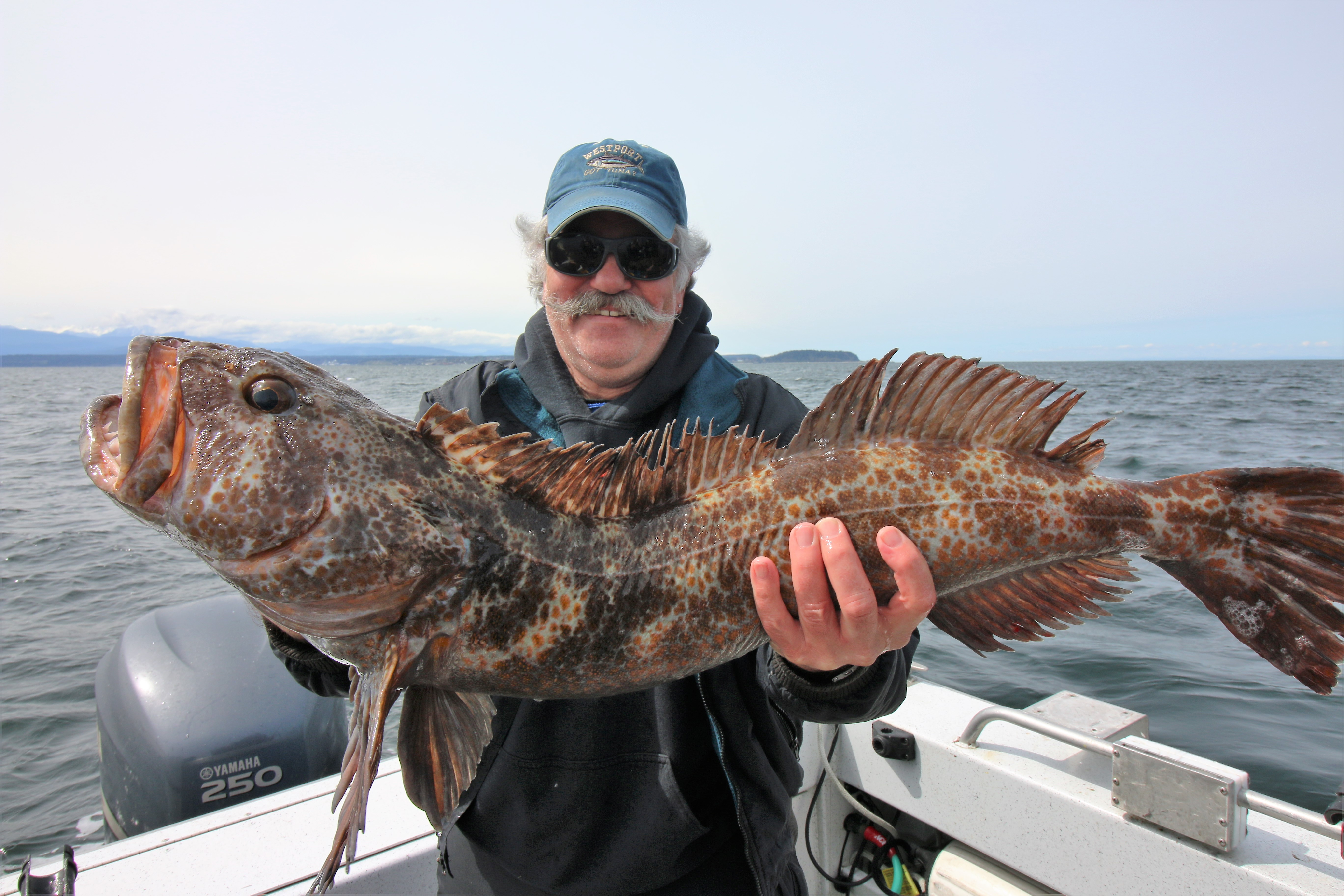 Seattle fishing charters lingcod fishing on 4 11 17 for Puget sound fishing charters